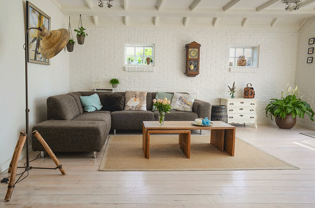 Living-Room-Decoration-with-Indoor-Plants